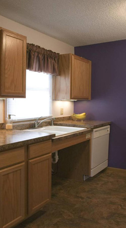 Functional & Accessible Kitchens - AccessAbility Options
